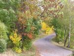 podzim01